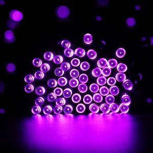 Qedertek 50 Cr. Purple LED Battery String Lights